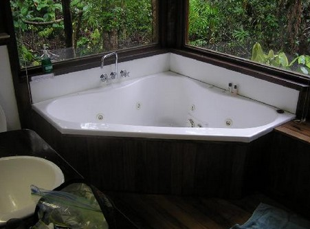 The Canopy Rainforest Tree Houses and Wildlife Sanctuary - Mackay Tourism
