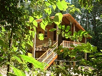 Rivers Edge Rainforest Retreat - Mackay Tourism