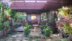 Blossoms Bed and Breakfast - Mackay Tourism