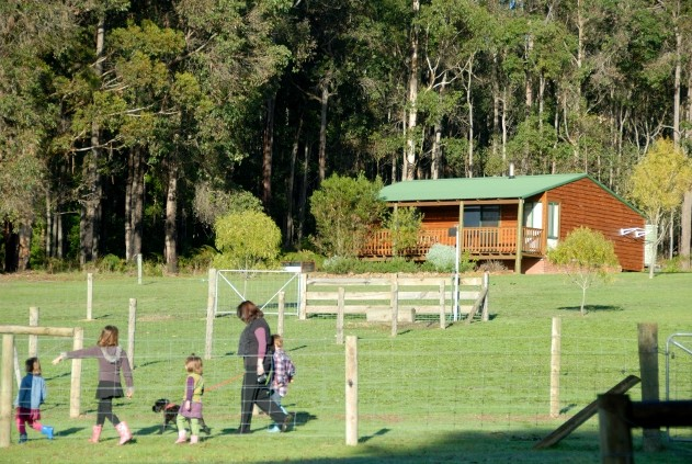Diamond Forest Farm Stay - Mackay Tourism