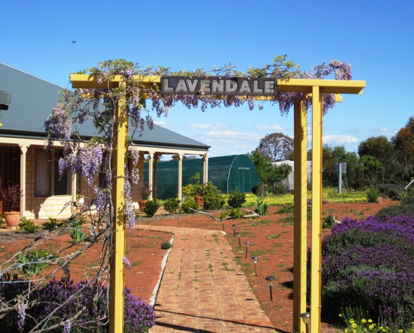 Lavendale Farmstay and Cottages - Mackay Tourism