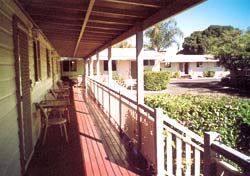 Bottle Tree Gardens Motel - Mackay Tourism