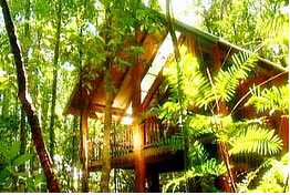 The Canopy Treehouses - Mackay Tourism