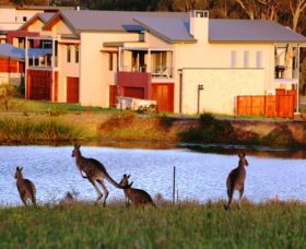Grand Mercure The Vintage Hunter Valley - Mackay Tourism