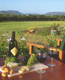 Tranquil Vale Vineyard Cottages - Mackay Tourism