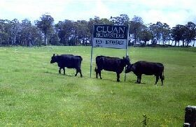 Cluan Homestead - Mackay Tourism