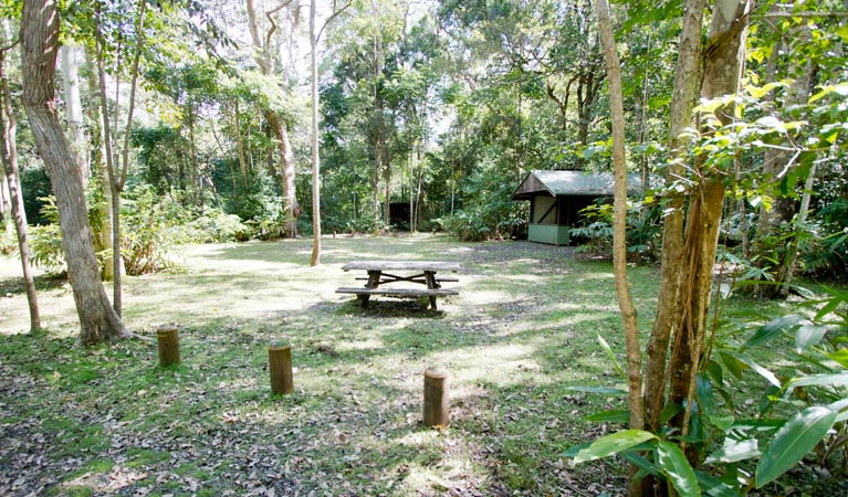 Iron Pot Creek campground - Mackay Tourism