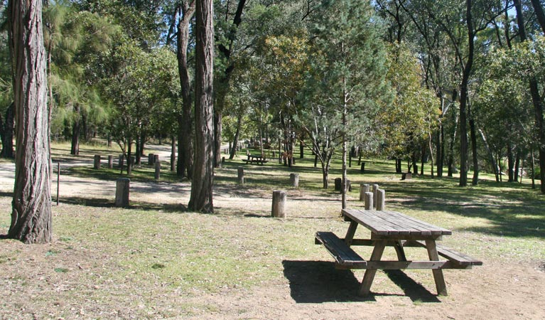 Lemon Tree Flat campground - Mackay Tourism