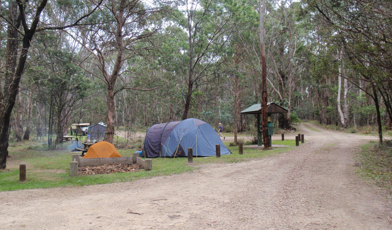 Native Dog campground - Mackay Tourism