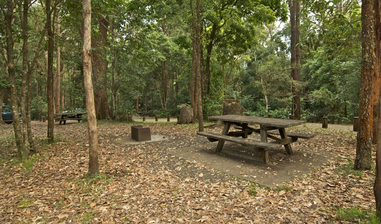 Sheepstation Creek campground - Mackay Tourism