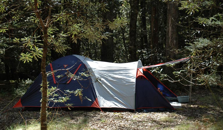 Thungutti campground - Mackay Tourism