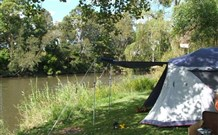 Williams River Holiday Park - Mackay Tourism