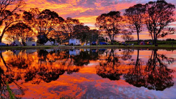 Coonawarra Bush Holiday Park - Mackay Tourism