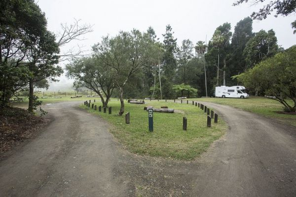 Eungella National Park Camping Ground - Mackay Tourism