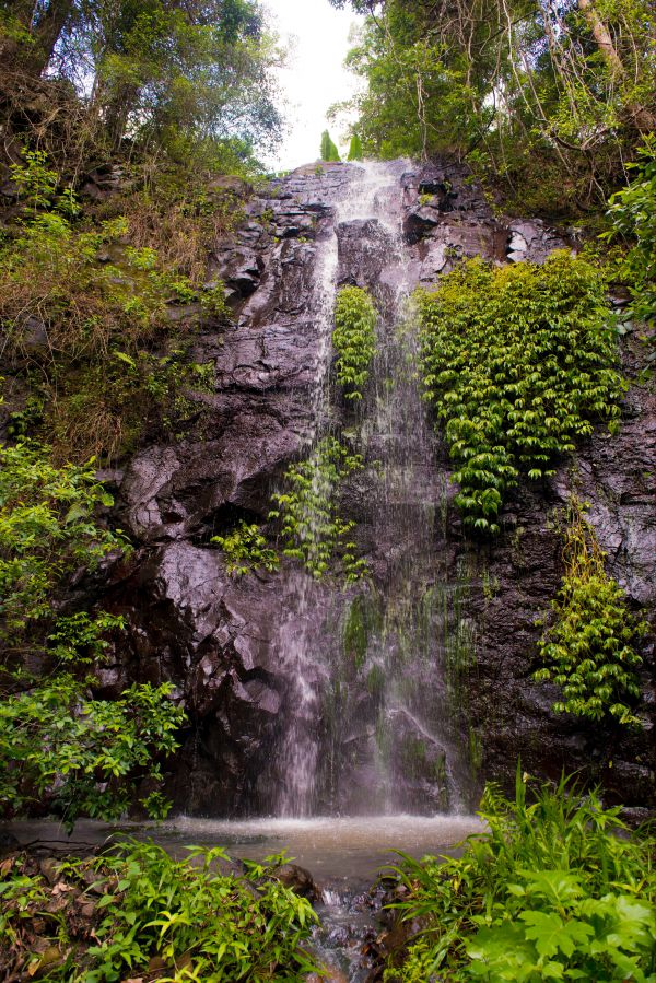 Nimbin waterfall retreat - Mackay Tourism