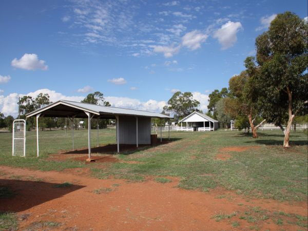 Trundle Showground
