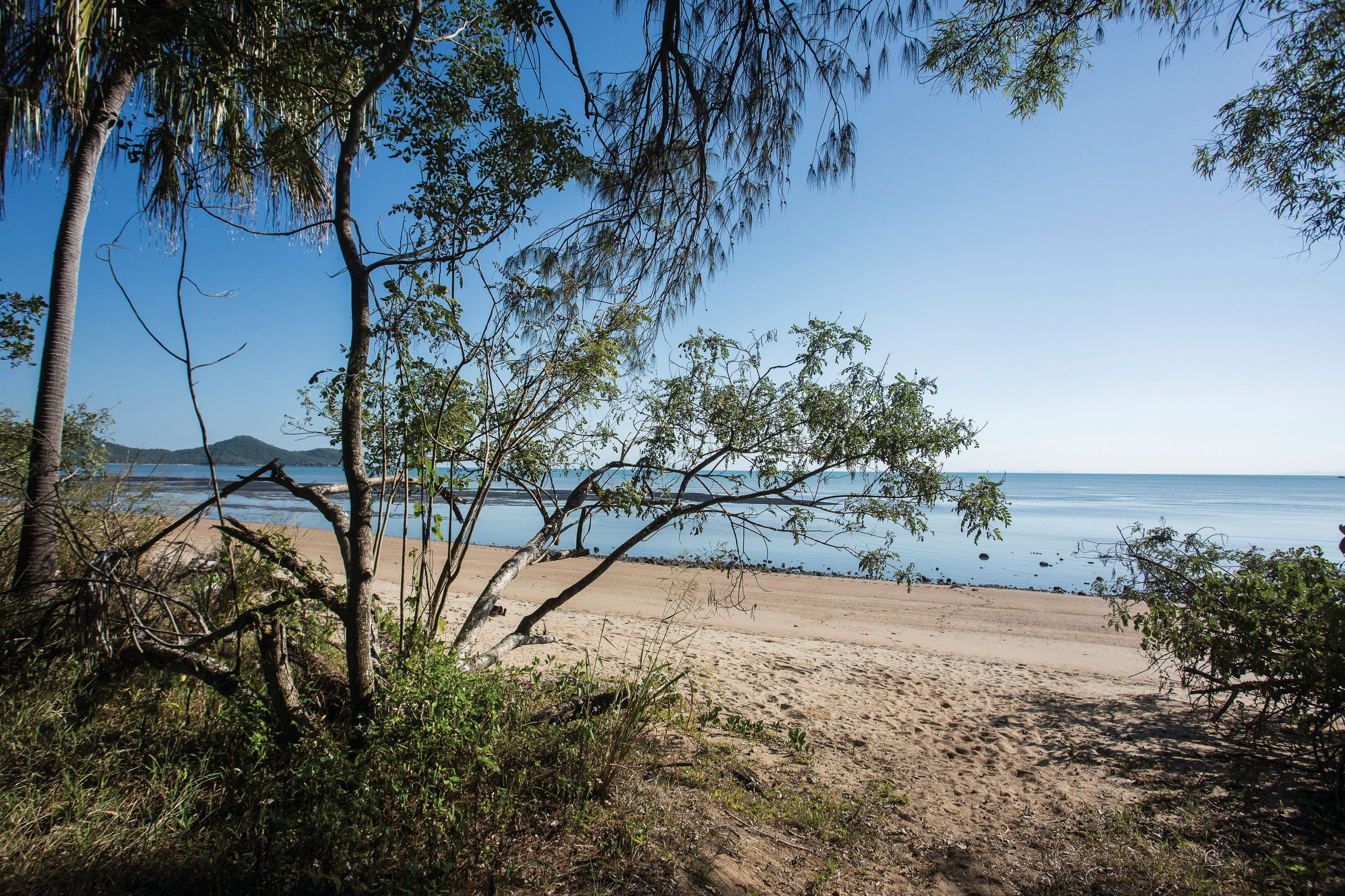 Cape Hillsborough National Park camping - Mackay Tourism
