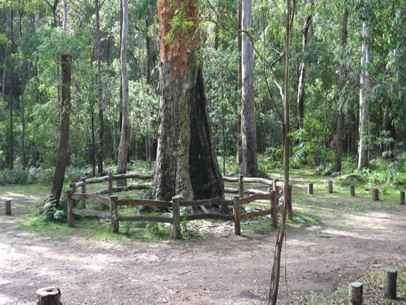 Six Mile Creek campground - Mackay Tourism