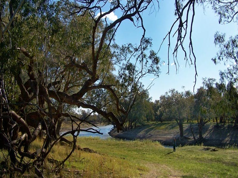Yanda campground - Mackay Tourism