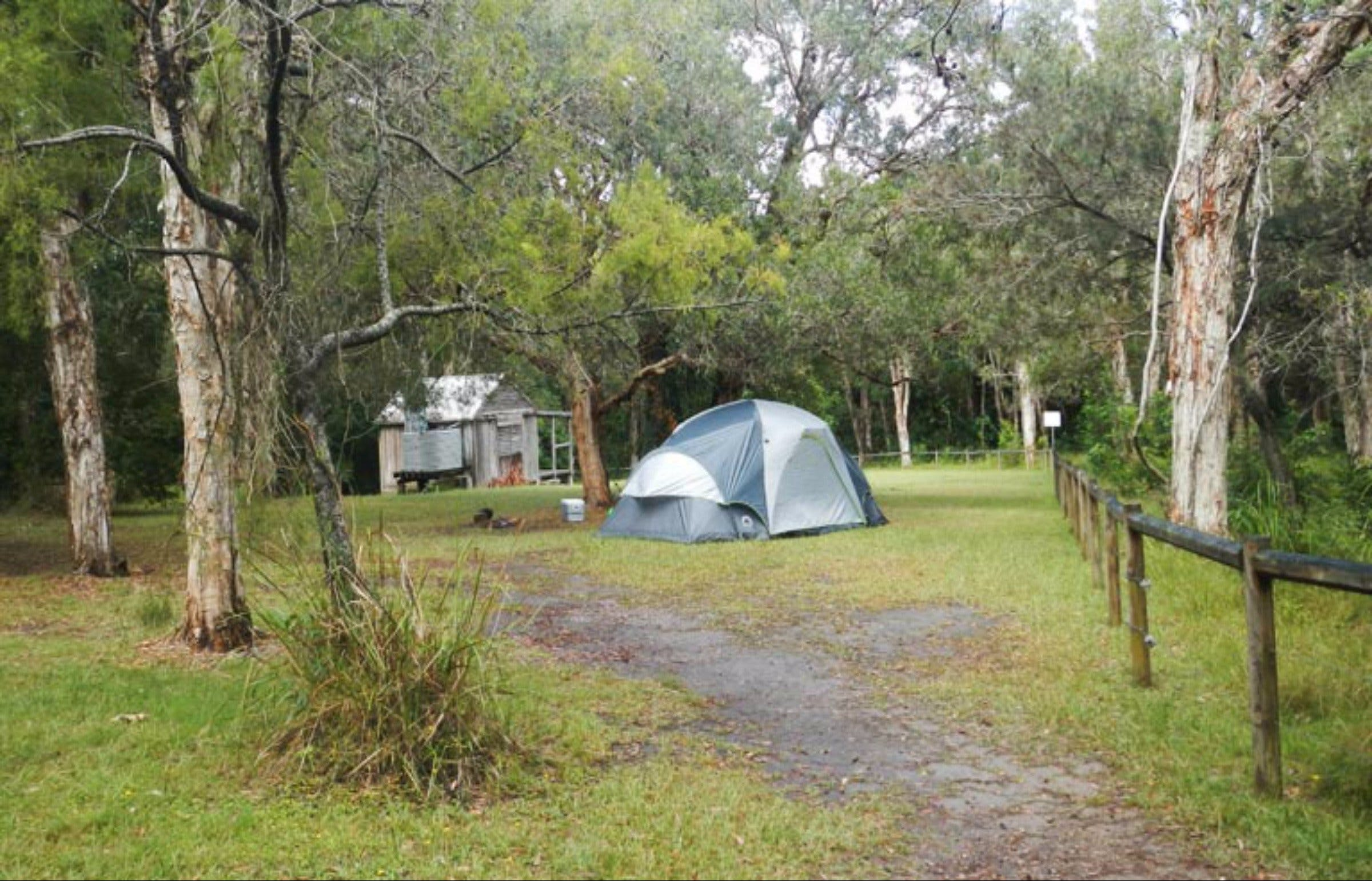 Kylies Hut walk-in campground - Mackay Tourism