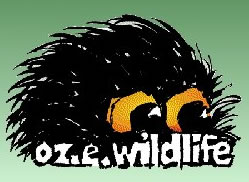 OZe Wildlife - Mackay Tourism
