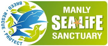 Manly SEA LIFE Sanctuary - Mackay Tourism