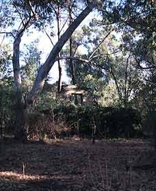 Ghost House Walk Trail Yanchep National Park - Mackay Tourism