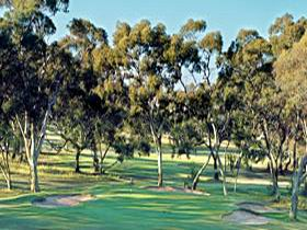 Tanunda Pines Golf Club - Mackay Tourism