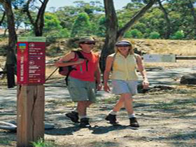 Riesling Trail - Mackay Tourism