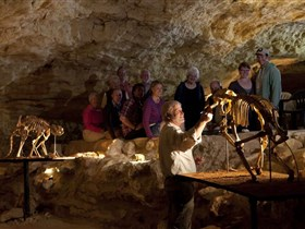 Naracoorte Caves National Park - Mackay Tourism