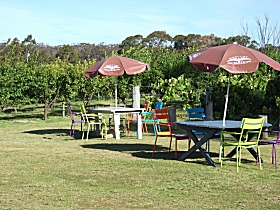 Cerise Brook Orchard  Family Golf - Mackay Tourism
