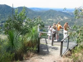 Mapleton Forest Reserve - Mackay Tourism
