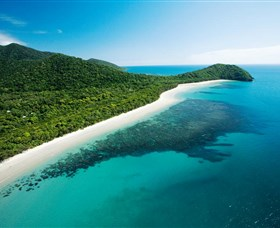 Cape Tribulation Daintree National Park - Mackay Tourism
