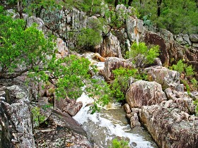 Crows Nest National Park - Mackay Tourism