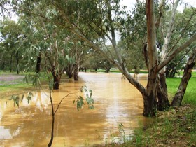 Saddliers Waterhole and Hamburg Creek - Mackay Tourism