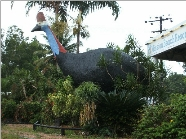 The Big Cassowary - Mackay Tourism