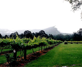 Cambewarra Estate Wines - Mackay Tourism