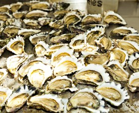 Wheelers Oysters - Mackay Tourism