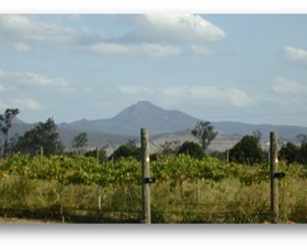 Ironbark Ridge Vineyard - Mackay Tourism