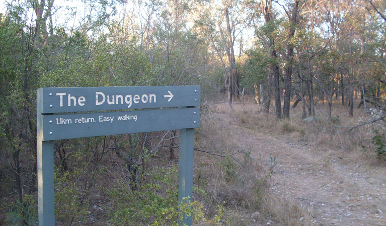 Dungeon lookout - Mackay Tourism