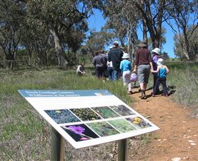 South Gundagai Woodlands Walk - Mackay Tourism