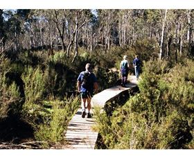Hume and Hovell Walking Track - Henry Angel Trackhead - Mackay Tourism