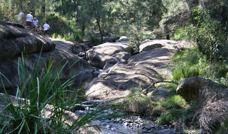 Towarri National Park - Mackay Tourism