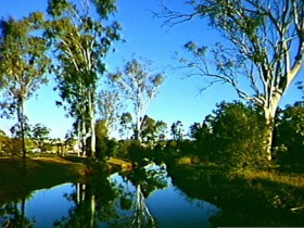 Dingo Creek Park - Mackay Tourism