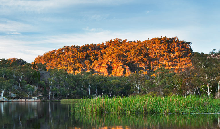Wollemi National Park - Mackay Tourism