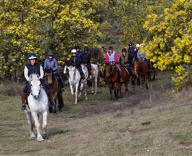 Burnelee Excursions on Horseback - Mackay Tourism