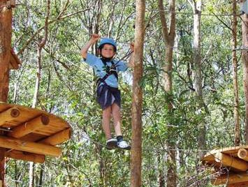 TreeTops Newcastle - Mackay Tourism