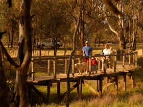 Loxton's Drives, Walks and Trails