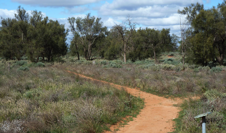 Grasslands Nature trail - Mackay Tourism