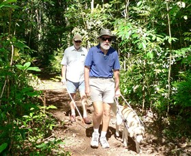 Wongabel State Forest - Mackay Tourism